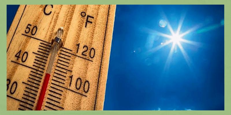 7 dicas para uso do colete no verão